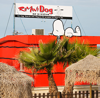 Bagno 81 di Rimini: una spiaggia per cani e una per le vacanze in ...