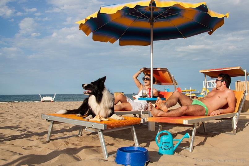 I servizi della spiaggia per cani del bagno 81 rimini dog beach - Bagno 81 rimini ...