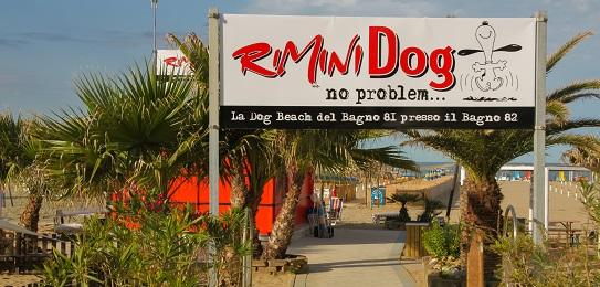 The Bagno 81 dog beach in Rimini